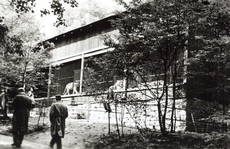 Historie O Zoo Zoo Ostrava