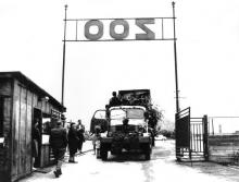hroši v r.1979