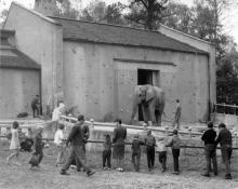 výstavba pavilonu vodních ptáků začala v 70.letech