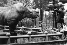 letecký snímek - pavilon slonů s venkovním výběhem